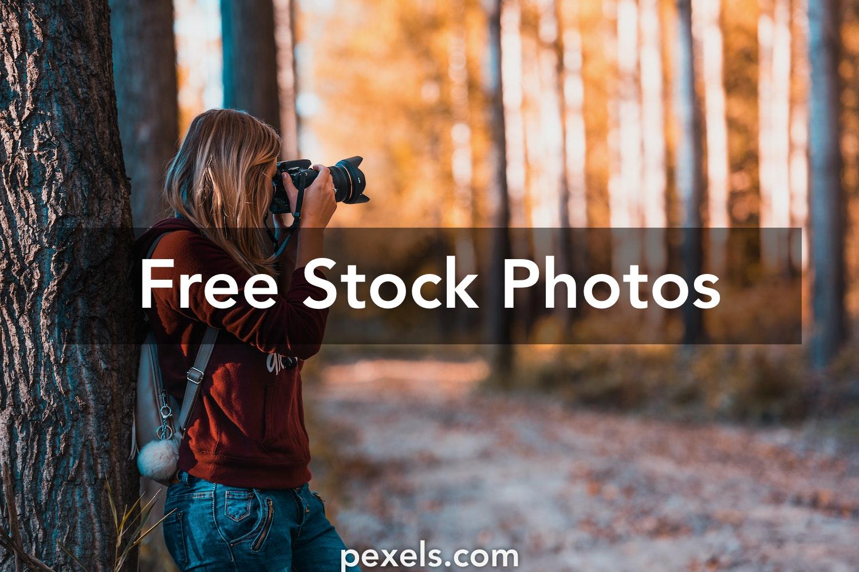 10 000 Best Photo Editing Photos 100 Free Download Pexels Stock Photos