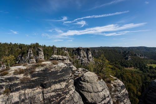 Rocky cliffs near green forest