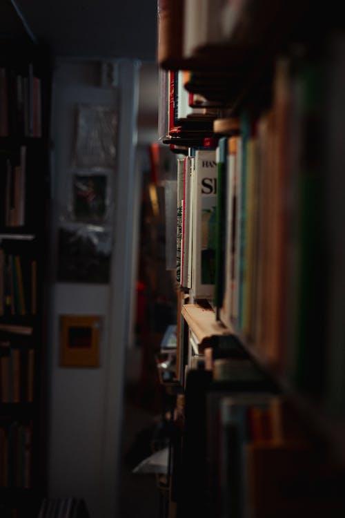 Kostnadsfri bild av arkitektur, bibliotek, böcker, bokhylla