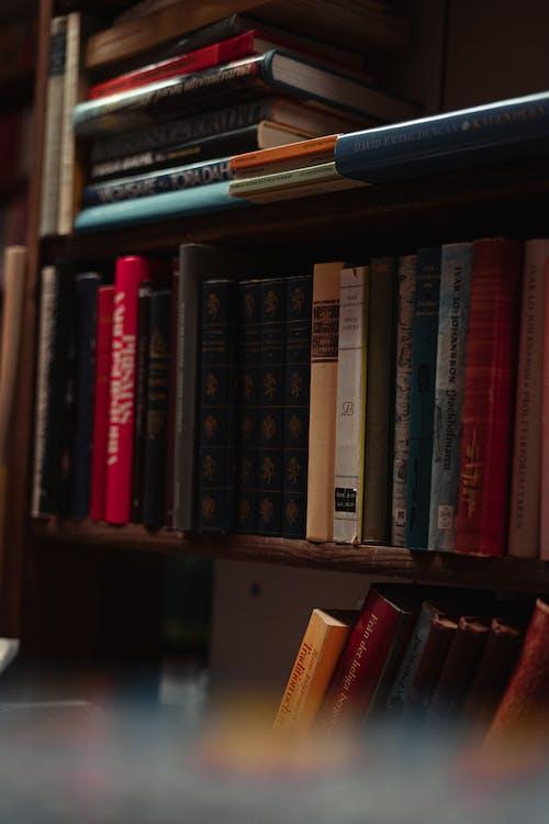 Kostnadsfri bild av bibliotek, böcker, bok, bokbindningar