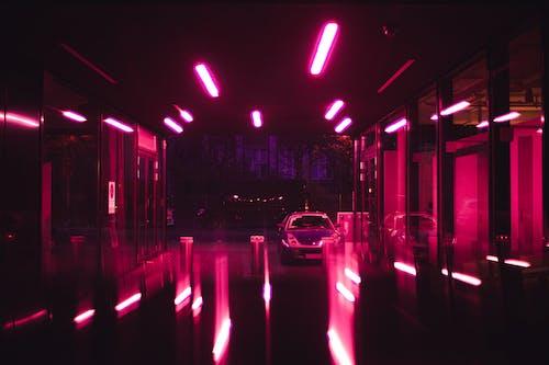 Kostnadsfri bild av ljus, neon