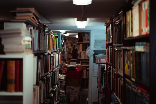Kostnadsfri bild av bibliotek, bladhäfte, böcker, bok