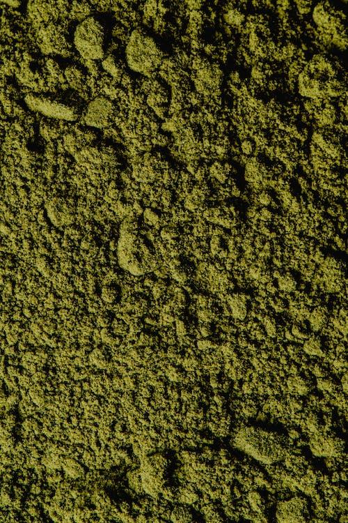 Macro Photography of Green Powder