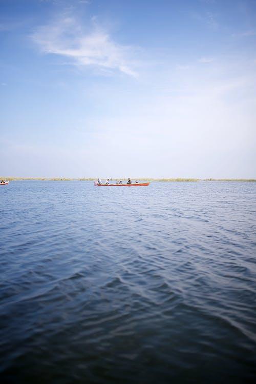 Free stock photo of iraq, Marshes