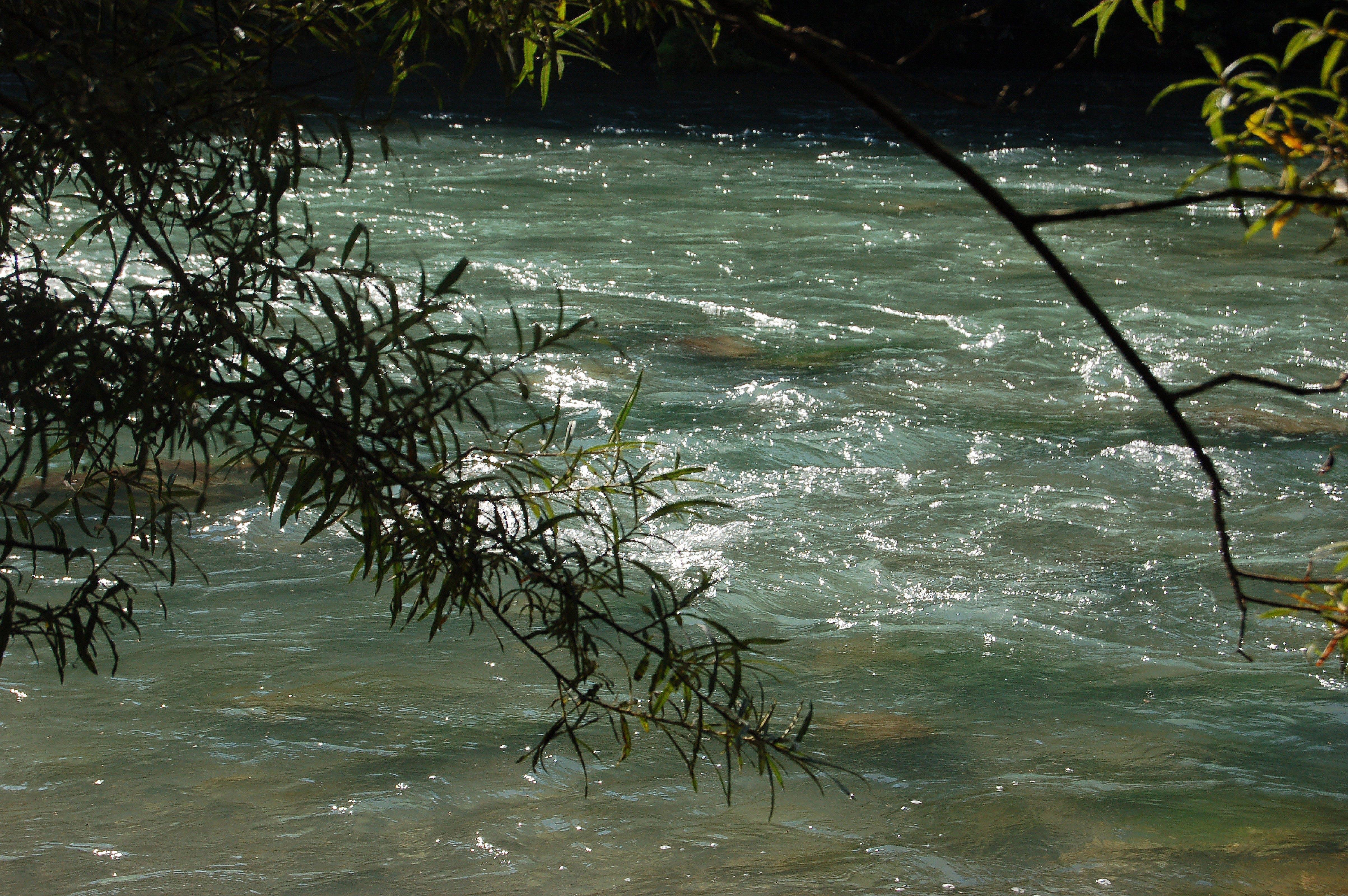 Základová fotografie zdarma na téma voda