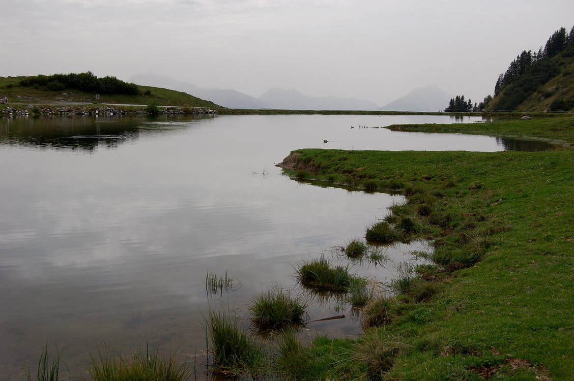 hora, sivý, voda