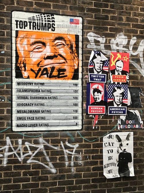 Free stock photo of america, Donald Trump, london, political