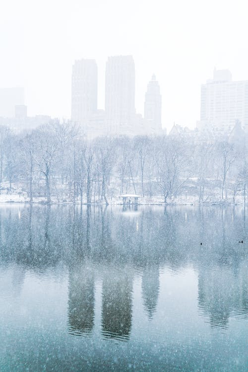 Picturesque scenery of Central Park with leafless trees and lake reflecting skyscrapers of New York during snowfall on foggy day
