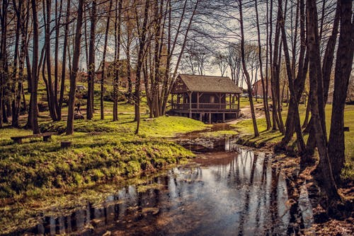 Small wooden shack located in settlement on grassy ground near calm stream in rural terrain with tall trees in countryside