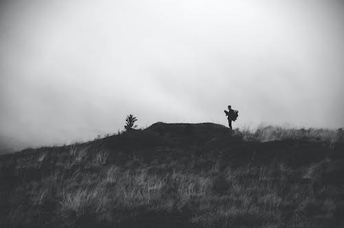 Photos gratuites de activité, anonyme, aventure