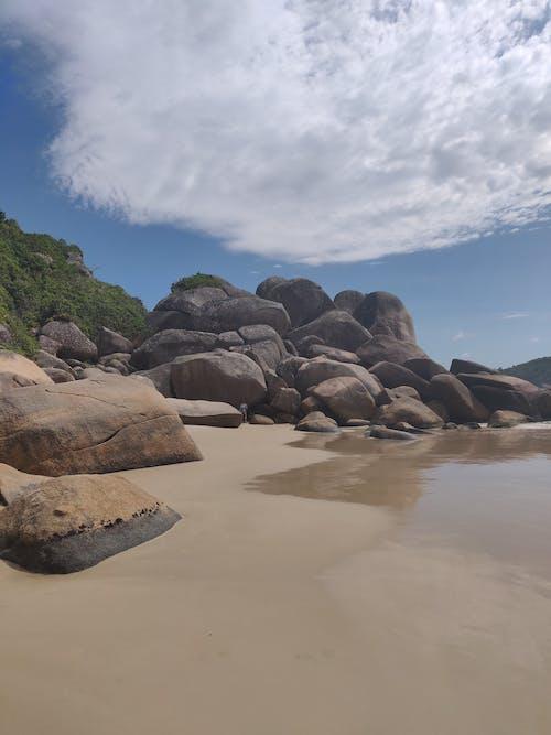 Free stock photo of beach, coast, daylight, grass