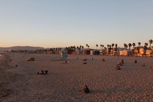 Fotos de stock gratuitas de los Angeles, Pareja, playa, puesta de sol