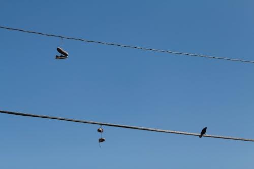 Fotos de stock gratuitas de eléctrico, líneas eléctricas
