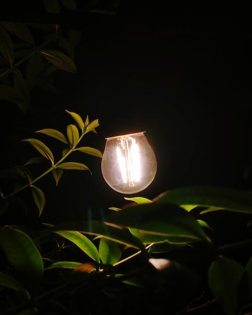 Free stock photo of cozy, dark, electricity