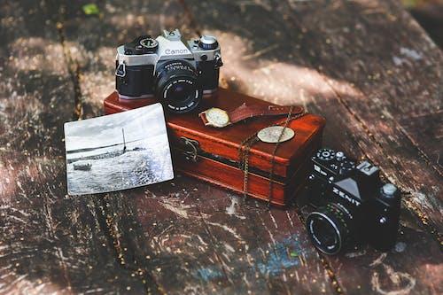 Kostnadsfri bild av foto, fotografi, kamera, kanon