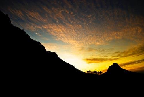 Immagine gratuita di africa, alba, alberi, arrampicarsi