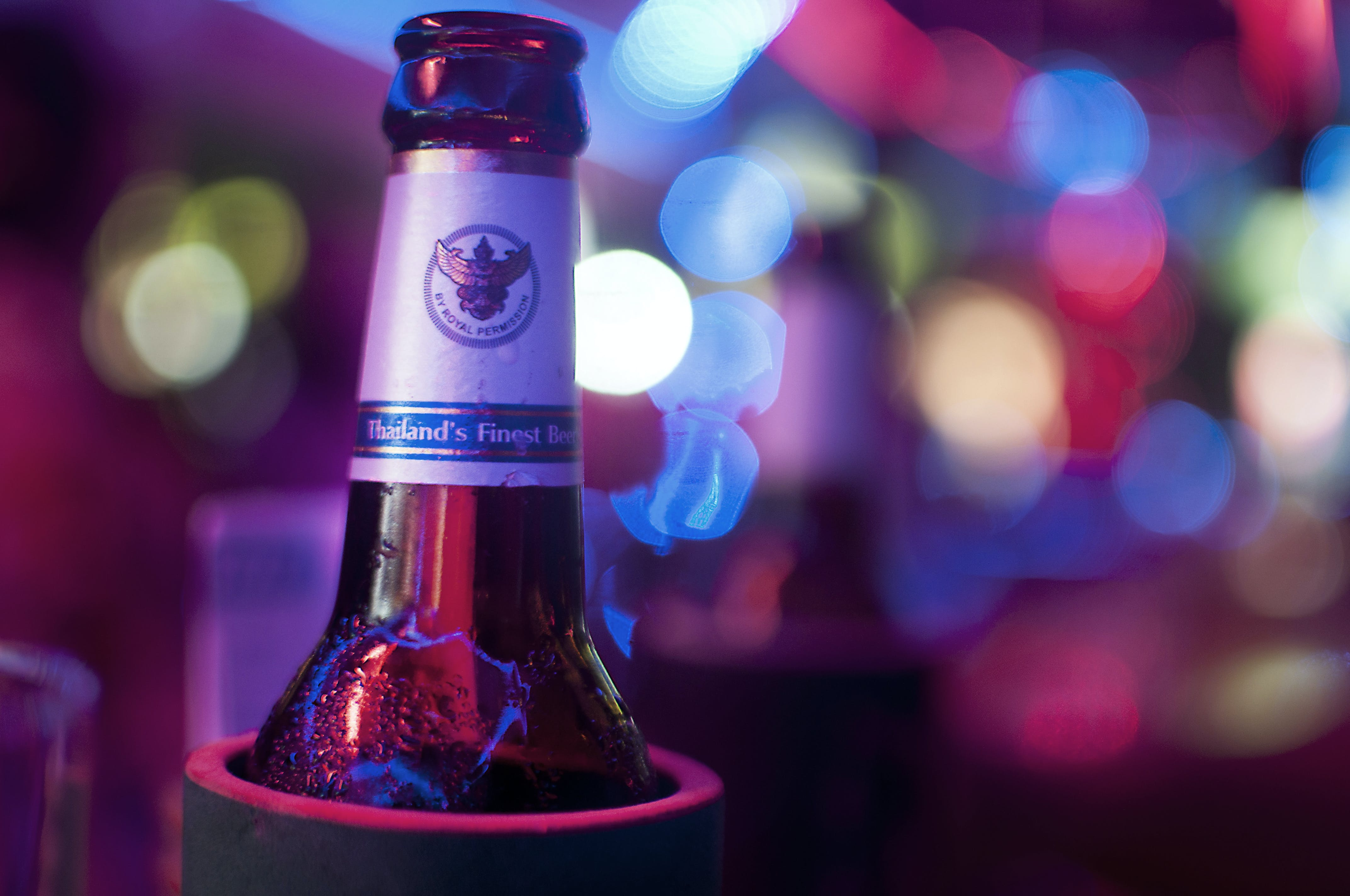 Free stock photo of alcohol, beans, beer, bottle