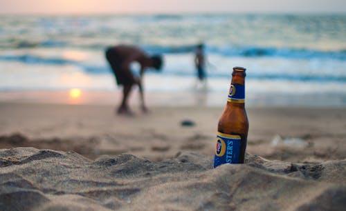 Бесплатное стоковое фото с алкогольный напиток, берег, берег моря, берег океана