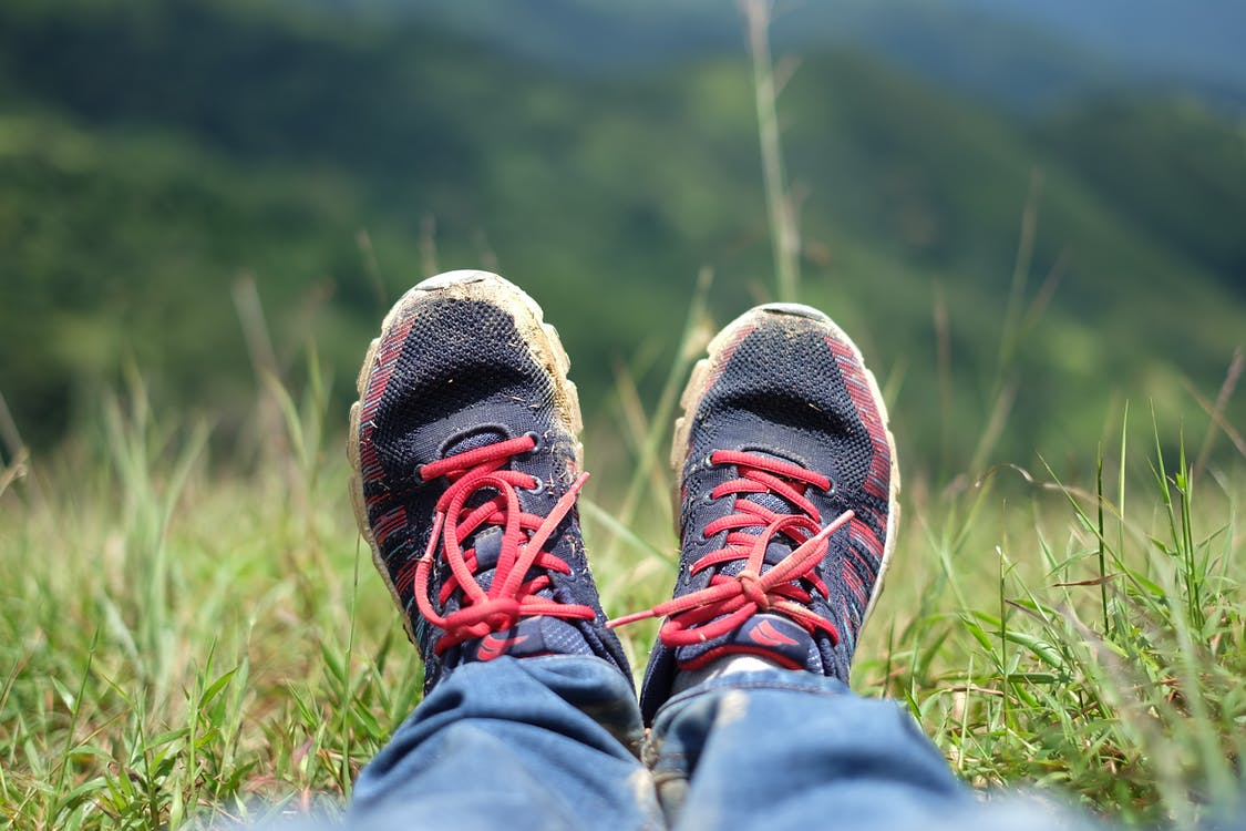 Free stock photo of grass, trekking
