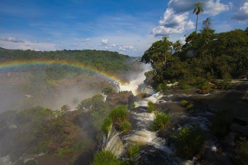 Fotos de stock gratuitas de arco iris, Argentina, Brasil, cascada