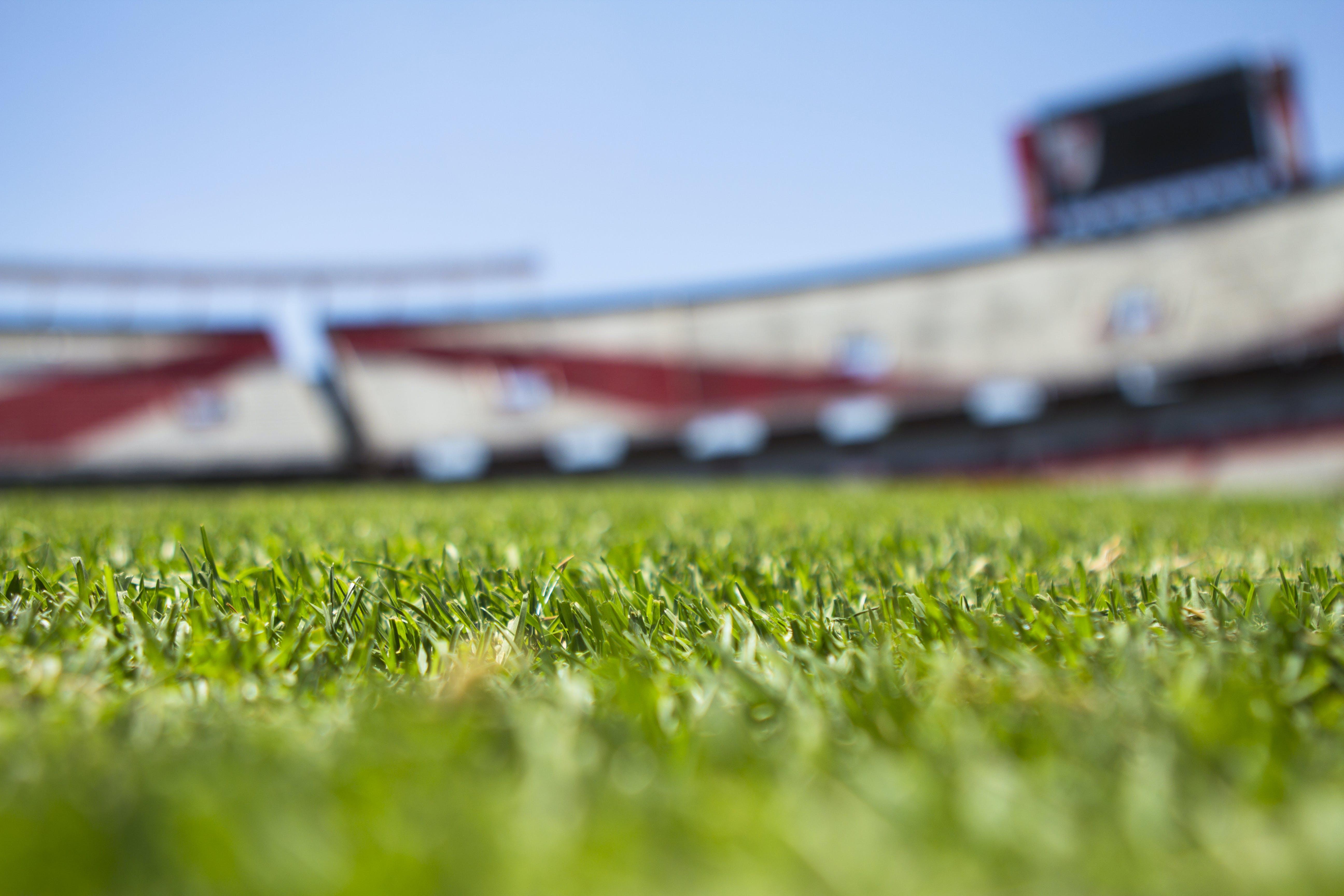 Foto d'estoc gratuïta de camp, estadi, futbol, herba
