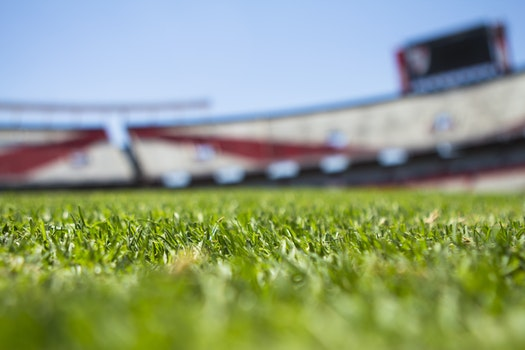 Green Grass Across Beige Red Open Sports Stadium during Daytime