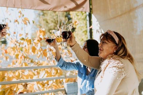 Fotobanka sbezplatnými fotkami na tému alkoholický nápoj, byť spolu, chanuka