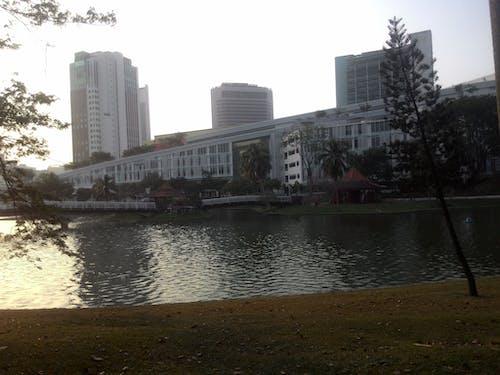 Imagine de stoc gratuită din centrul orasului, metropolă, oraș mare