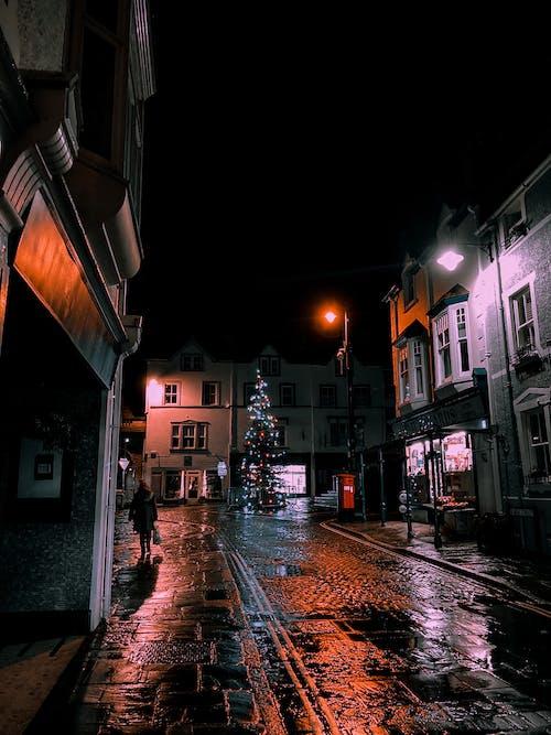 Night illuminated city street decorated with Christmas tree