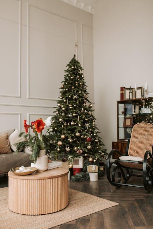 Gratis stockfoto met binnenshuis, bloemstuk, decoratie, eigentijds