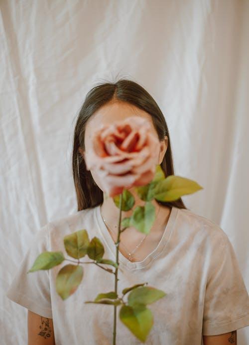 Fotobanka sbezplatnými fotkami na tému anonymný, aromatický, botanika