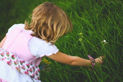 Immagine gratuita di bambino, biondo, erba, femmina
