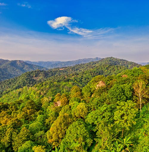 Majestic landscape of mountain range covered with lush picturesque tropical trees against cloudy blue sky on sunny day
