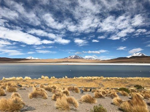 Základová fotografie zdarma na téma denní světlo, hora, jezero