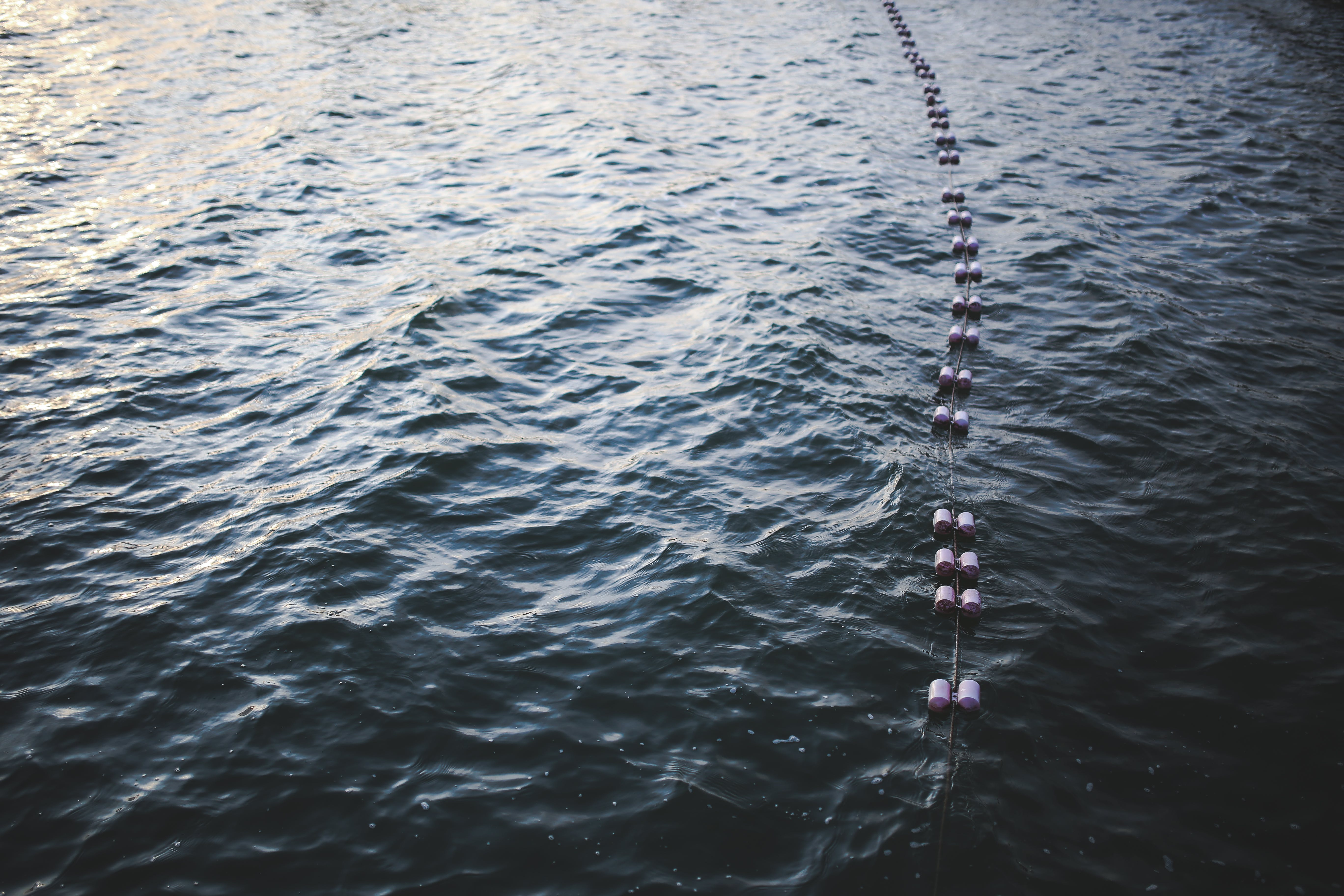 Buoys floating on top of the water