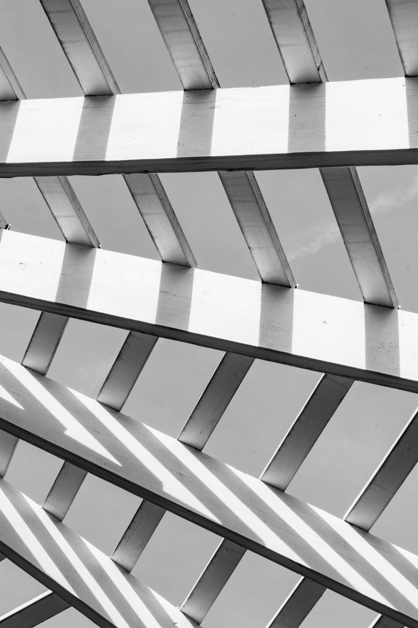 Free stock photo of abstract, abstract photo, lines, monochrome