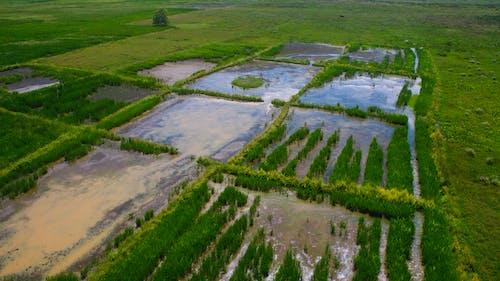 공중 영상, 농경지, 농장의 무료 스톡 사진
