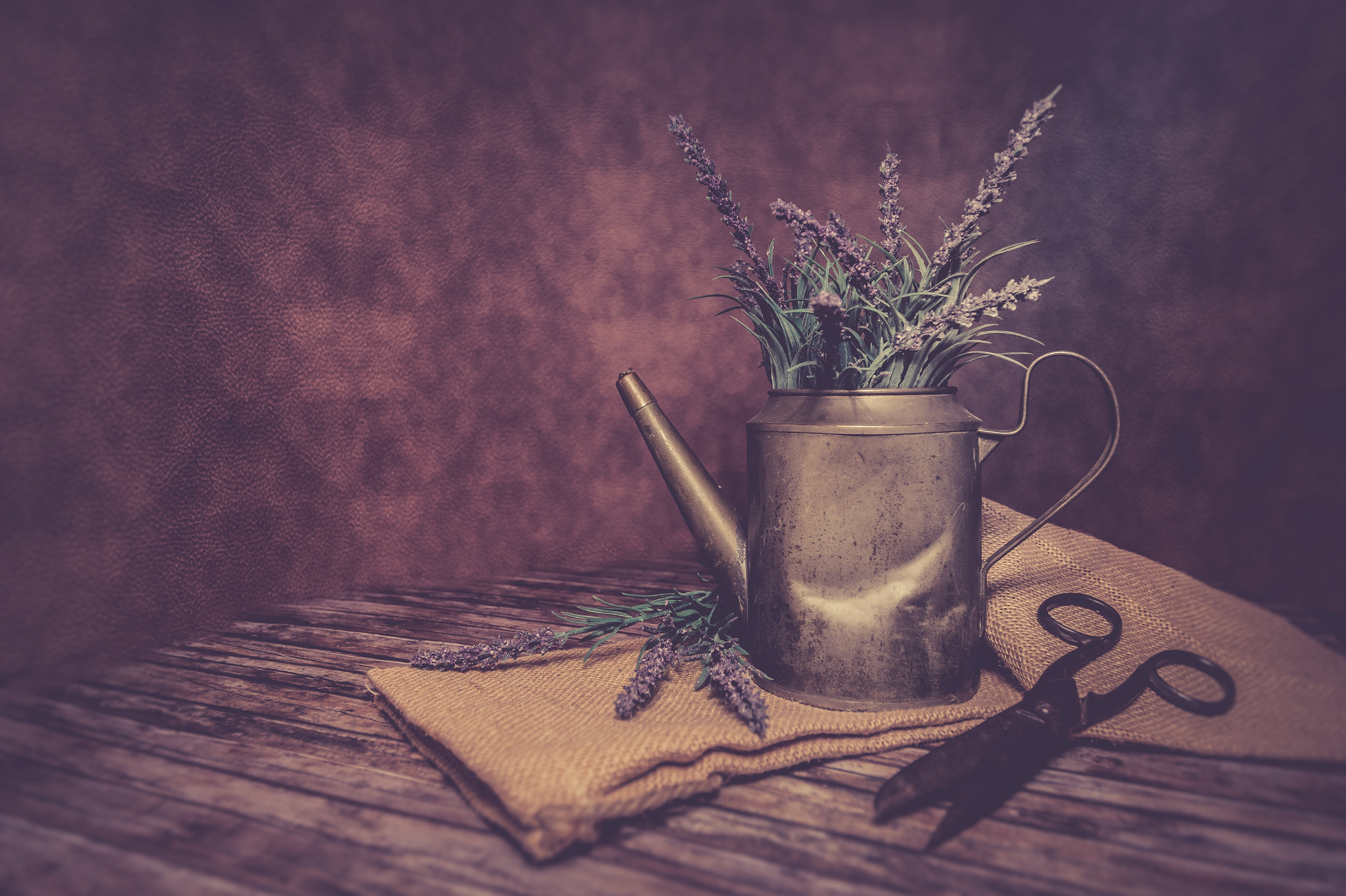 Free stock photo of flowers, vintage, table, rustic