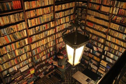 Gratis arkivbilde med bibliotek, kafé