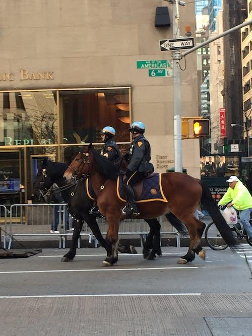 Free stock photo of new york city, police, street
