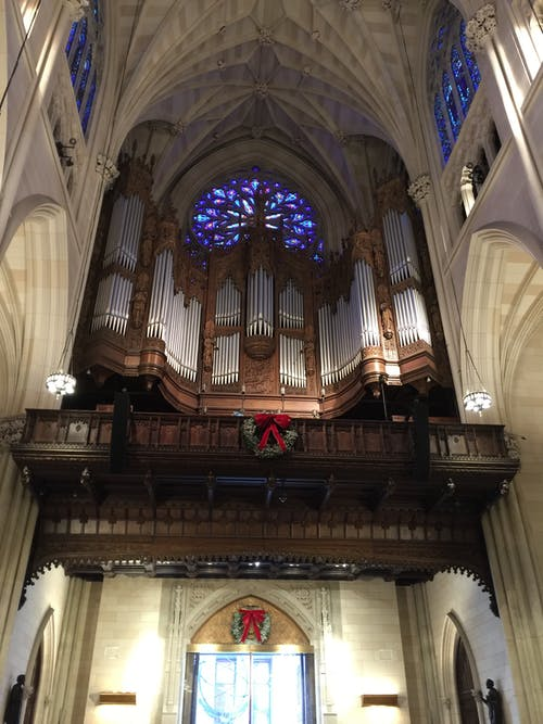 Free stock photo of cathedral, church, church organ, worship