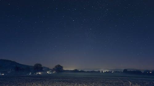 Foto d'estoc gratuïta de arbres, camps, cel, estrelles