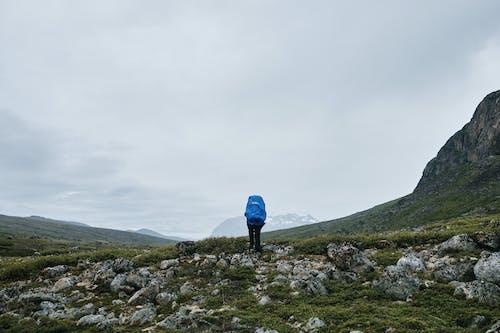 Person in Blue Jacket Walking on Green Grass Field