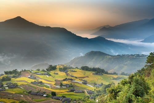 Breathtaking landscape of green valley in summer
