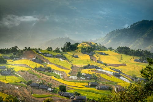 Agricultural fields and rural houses on lush hilly terrain
