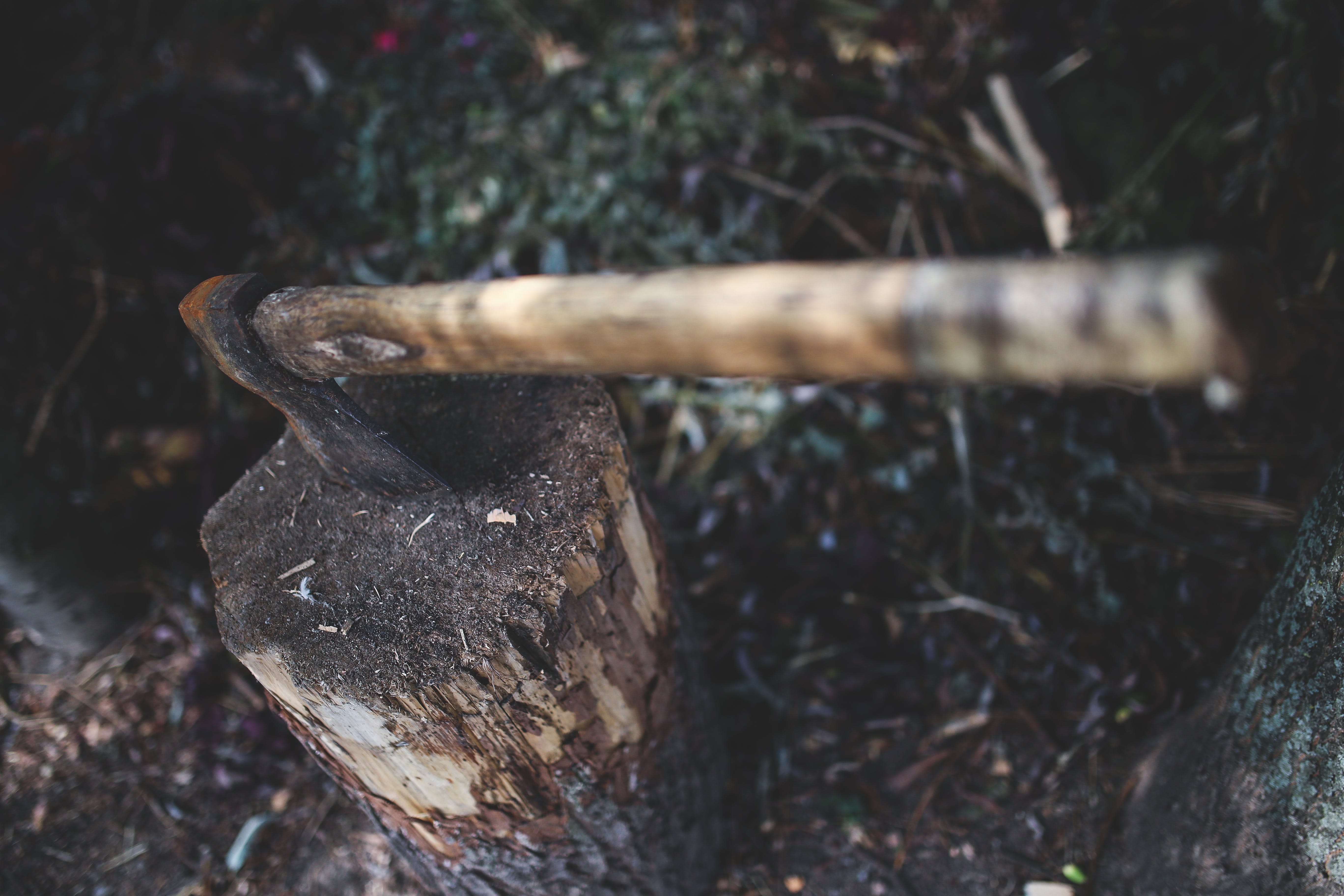 Ax in the stump