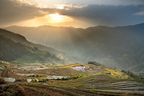 Scenery of rice fields and green mountains