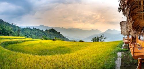 Bungalows in village near grassy hills