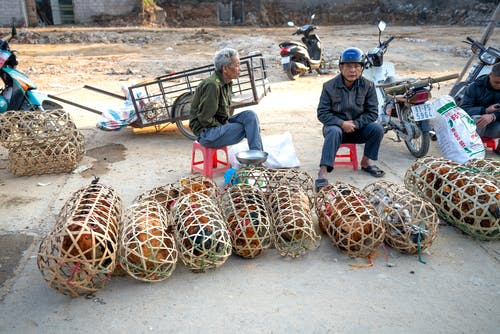 Aged Asian men in casual clothes sitting on street near cages with domestic chickens on local market in poor district un daytime