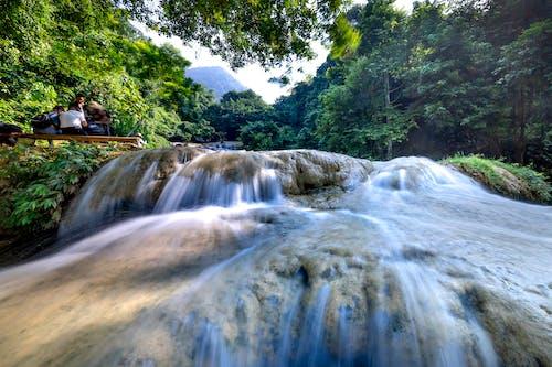Majestic waterfall flowing in rainforest